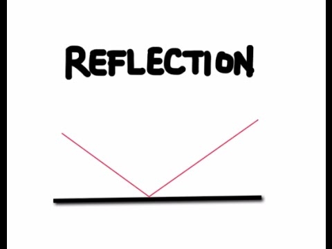 The Law of Reflection and Plane Mirrors