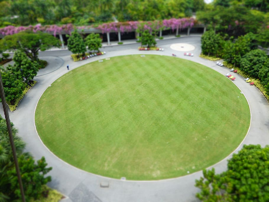 circle-shaped or oval-shaped lawn
